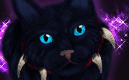 Фото Черная кошка с голубыми
